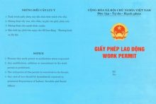 Xin cấp giấy phép lao động cho người nước ngoài tại Hà Nội