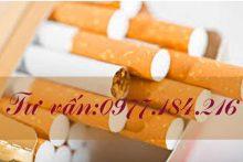 Thủ tục cấp giấy phép bán lẻ thuốc lá như thế nào?