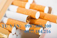 Thủ tục xin cấp lại giấy phép bán lẻ sản phẩm thuốc lá