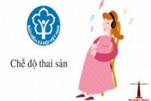 Hồ sơ giải quyết chế độ thai sản