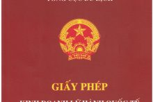 Tư vấn và dịch vụ cấp giấy phép kinh doanh lữ hành quốc tế đối với doanh nghiệp đưa khách du lịch ra nước ngoài và đưa khách du lịch vào Việt Nam