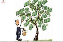 Việc chi trả cổ tức cho cổ đông được quy định như thế nào?